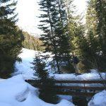 Maarten op een besneeuwde brug nabij de Bärgunthütte