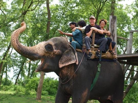 Op de rug van een olifant maken we een safari