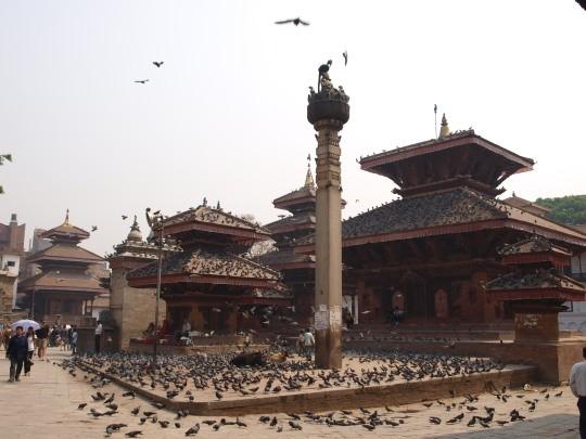 Tempels en duiven op Durbar square