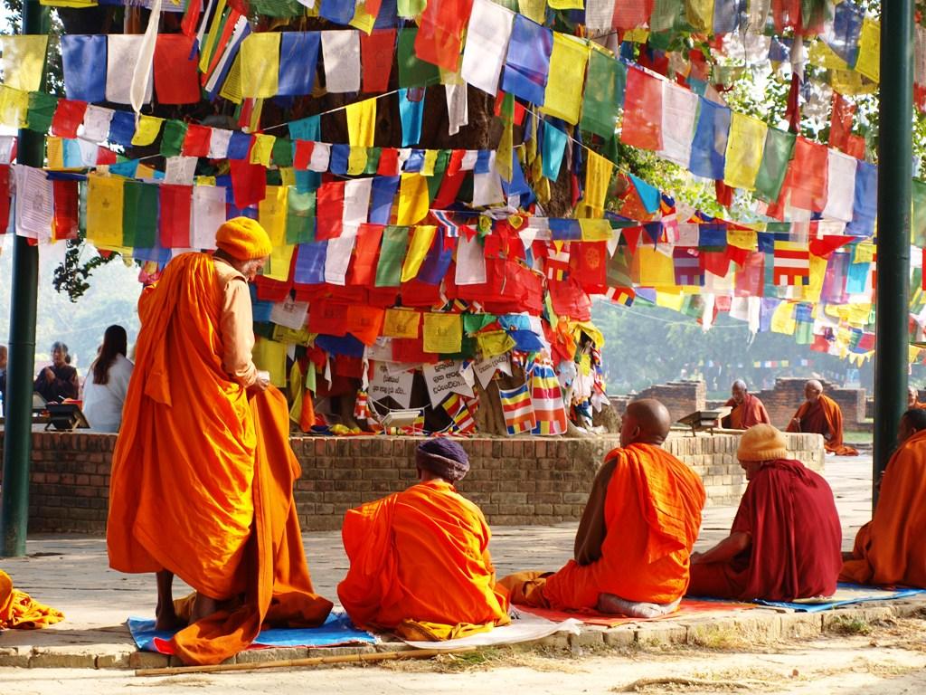 Pelgrims mediteren onder de Boeddha boom